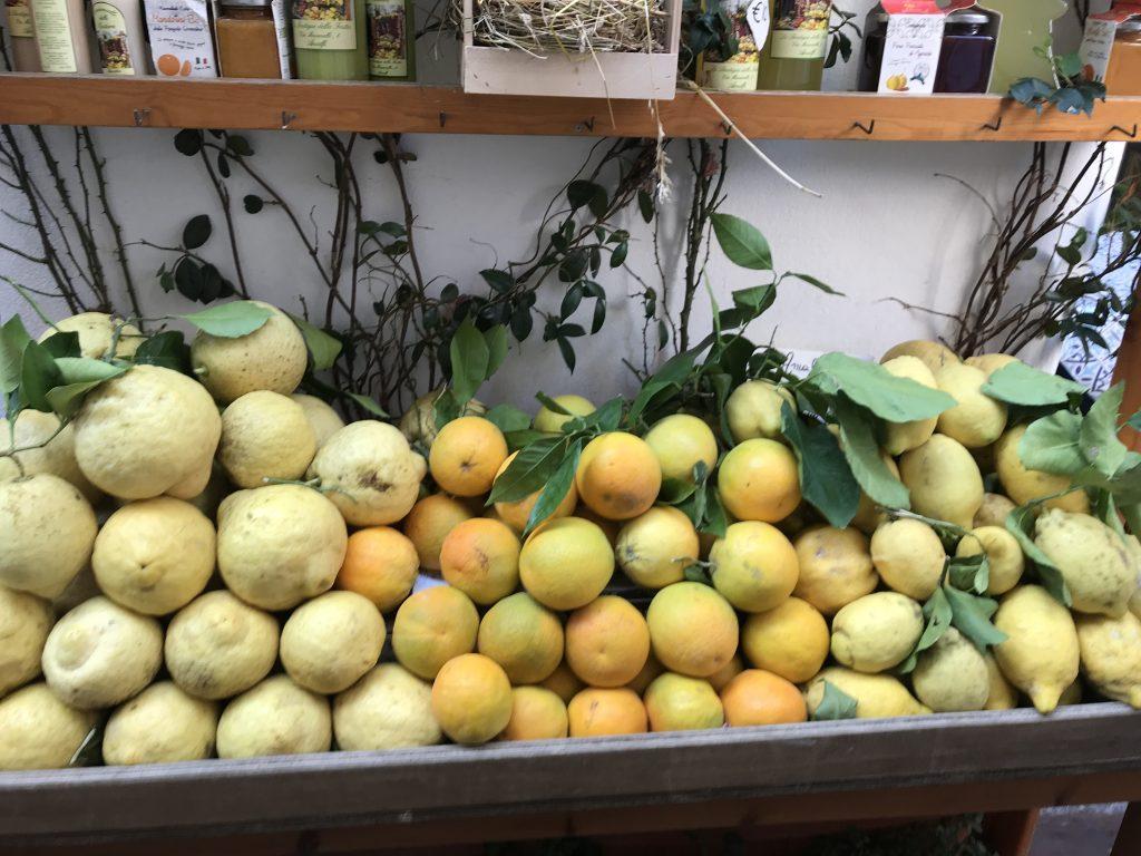 lamo LAMO AMALFITANO lemon Amalfi  surroundings